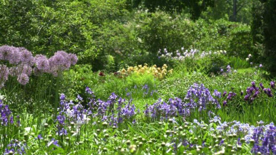 jardiner-sans-pesticides-mt0005571